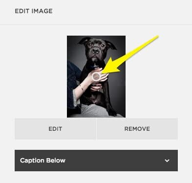 Editing an image's focal point in Squarespace.