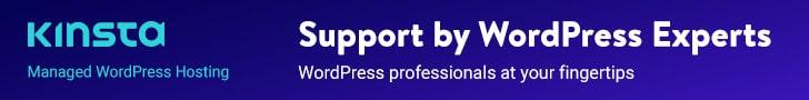 Kinsta hosting for WordPress