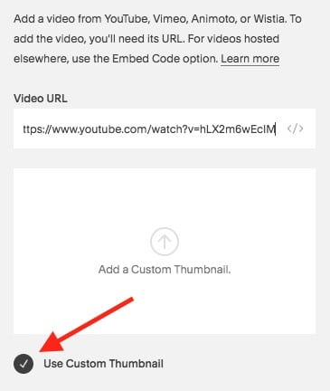 Speed up your Squarespace site by always choosing the 'custom thumbnail' option for video embeds.