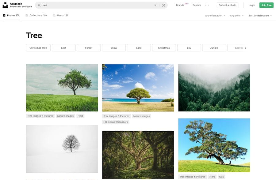 Royalty-free image sites like Unsplash can help you source good images for your blog posts.